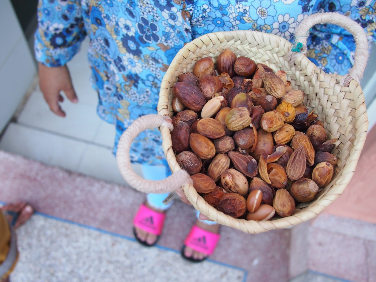 Growing argan trees and beekeeping in Morocco – and how can crowdfunding help?